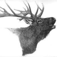 Elks Lodge #410 Madison, WI