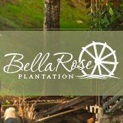 Bella Rose Plantation