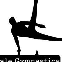 Vale Gymnastics