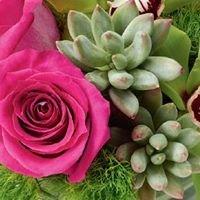 Always in Bloom Florist & Gifts