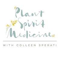 Plant Spirit Medicine with Colleen Sperati