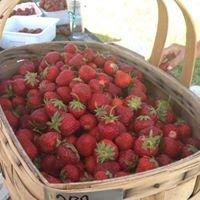 Red Bridge Strawberry Farm