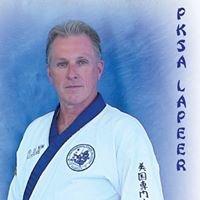 PKSA Karate - Lapeer