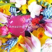 Amazing Flowers Den Helder