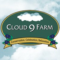 Cloud 9 - Vacation Cabin & Rentals
