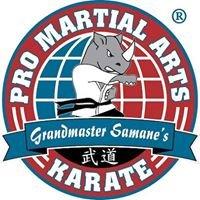 PRO Martial Arts Northlake