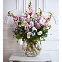 Stemsational floral