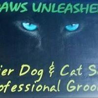 Paws Unleashed
