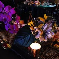 Kate Wilson Events