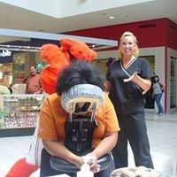 AnVia Massage Therapy
