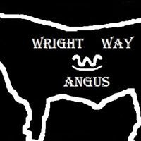 Wright Way Angus