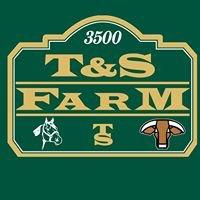 T&S Farm Banquet Hall