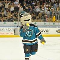 FINZ Worcester Sharks Mascot