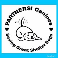 Partners! Canines