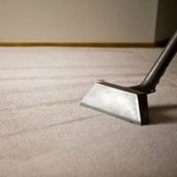 Steam Masters Carpet Cleaning & More
