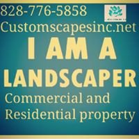 Custom Scapes Inc