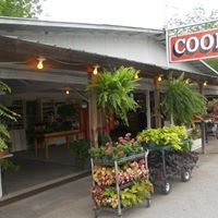 Cook's Roadside Market