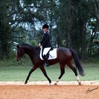 Sumter Equestrian Center