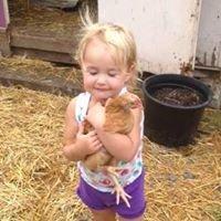 Double R Family Farm
