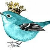 Blue Bird Style & Design