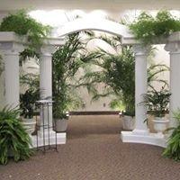 Greenscenes Plantscapes