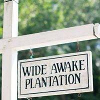 Old Wide Awake Plantation