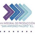 Cooperativa San Antonio Palopó R.L.