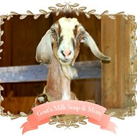 Wildlife Hollow Farm Goat's Milk Lotions, Body Products, and Pet Shampoo