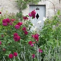 Le clos des jardins