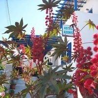 Naxos Hotel Adonis Apollon