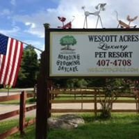 Wescott Acres Luxury Pet Resort & Rescue