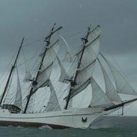 Tallship Artemis