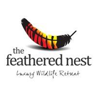 The Feathered Nest - Luxury Wildlife Retreat