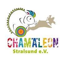 Chamäleon Stralsund e.V. - soziale Arbeit rockt