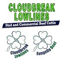 Cloudbreak Lowlines Cattle & Eungella Beef