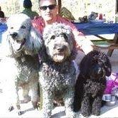 Happy Tails Pet Grooming LLC