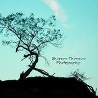 Sharron Thomson Photography