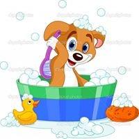 Shampooch Mobile Dog Groomer