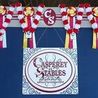 Casperey Stables~ The Great Place for Serious Horsing Around!