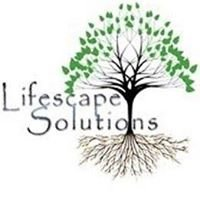 Lifescape Solutions/ Evolve Mental Health Alumni