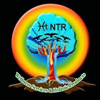 Nurture The Roots, LLC Activated Womb Power Holistic Health & Reiki Guide