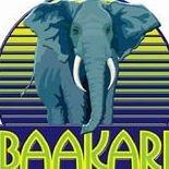 The Baakari Foundation, Inc.