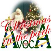 Christmas in the Park in Avoca, NY