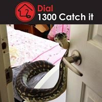 1300 Catch it
