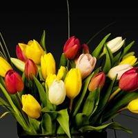 Flowers by Renee