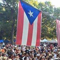 Festival De La Isla