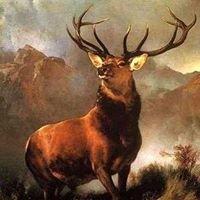Cocoa Elks 1532