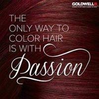 Haircolor Masters & Rejuvenating Day Spa