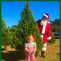 Strickland's Christmas Tree Farm