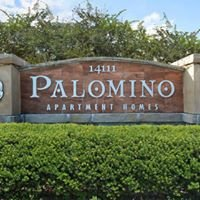 Palomino Apartment Homes